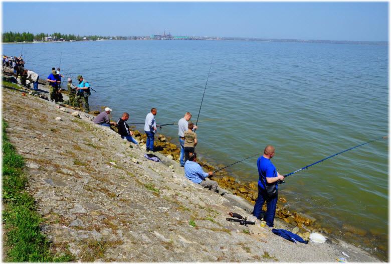 рыбалка в Таганрогском заливе